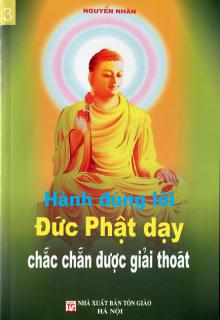 Hành đúng lời Phật dạy chắn chắn Giải thoát